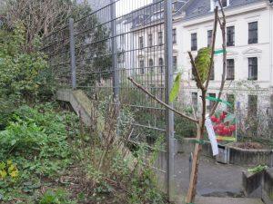"""1. Sommerfilm im Wandelgarten """"Orpheus und Eurydike"""" Pina Bausch 2008 @ Wandelgarten"""